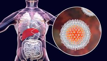 Virusul hepatitei C (VHC) se transmite prin contactul direct cu sângele infectat. Hepatita C este o boală asimptomatică până în stadiile tardive. Are risc major de cronicizare şi de cancer (70 %). Nu există vaccin pentru virusul hepatiei C!