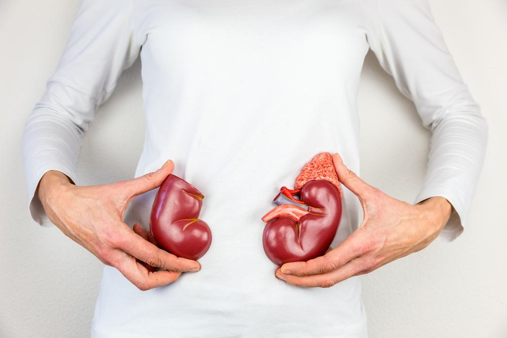 Durere rinichi