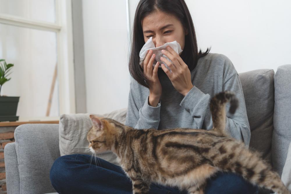 Factori care declanseaza alergiile